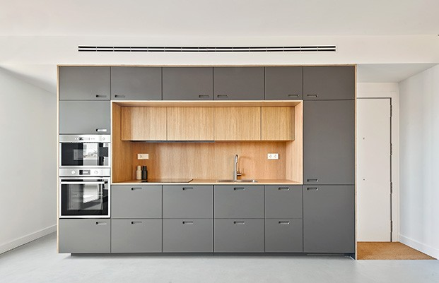 El módulo central diseñado por los arquitectos, acoge la cocina, todo el almacenaje y la zona de lavabo del baño